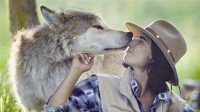 0118复盘:与狼(虎)共舞:公募狼、创投狼、涨价虎